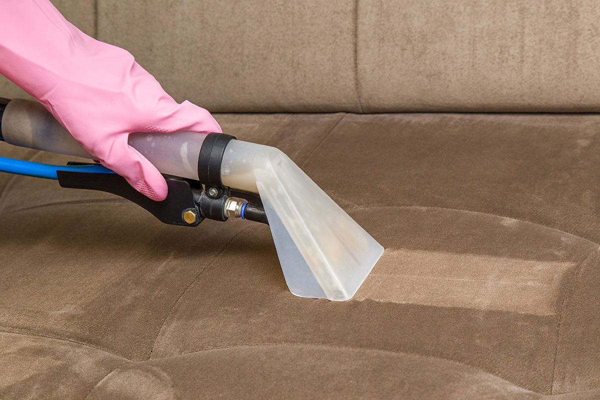 Sofa Cleaning Dublin Organic Services